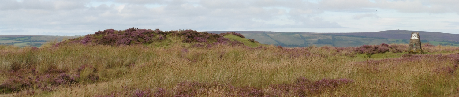 One of the Wambarrows on Winsford Hill. Dunkery Beacon can be seen in the distance to the right (© ENPA 2017)